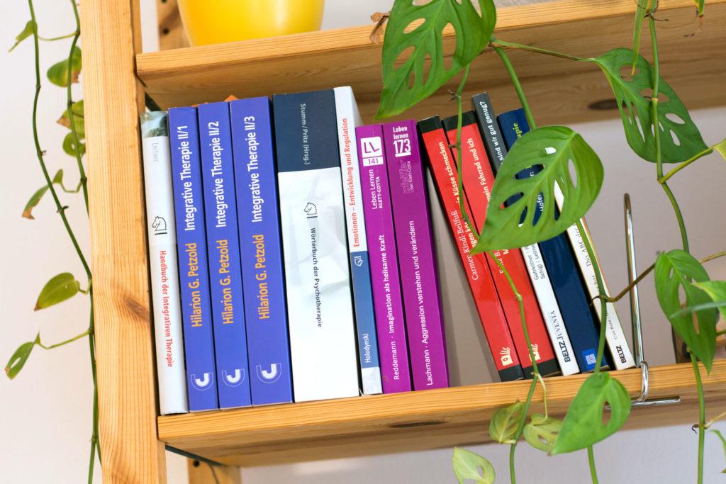 Fachliteratur für integrative Psychotherapie